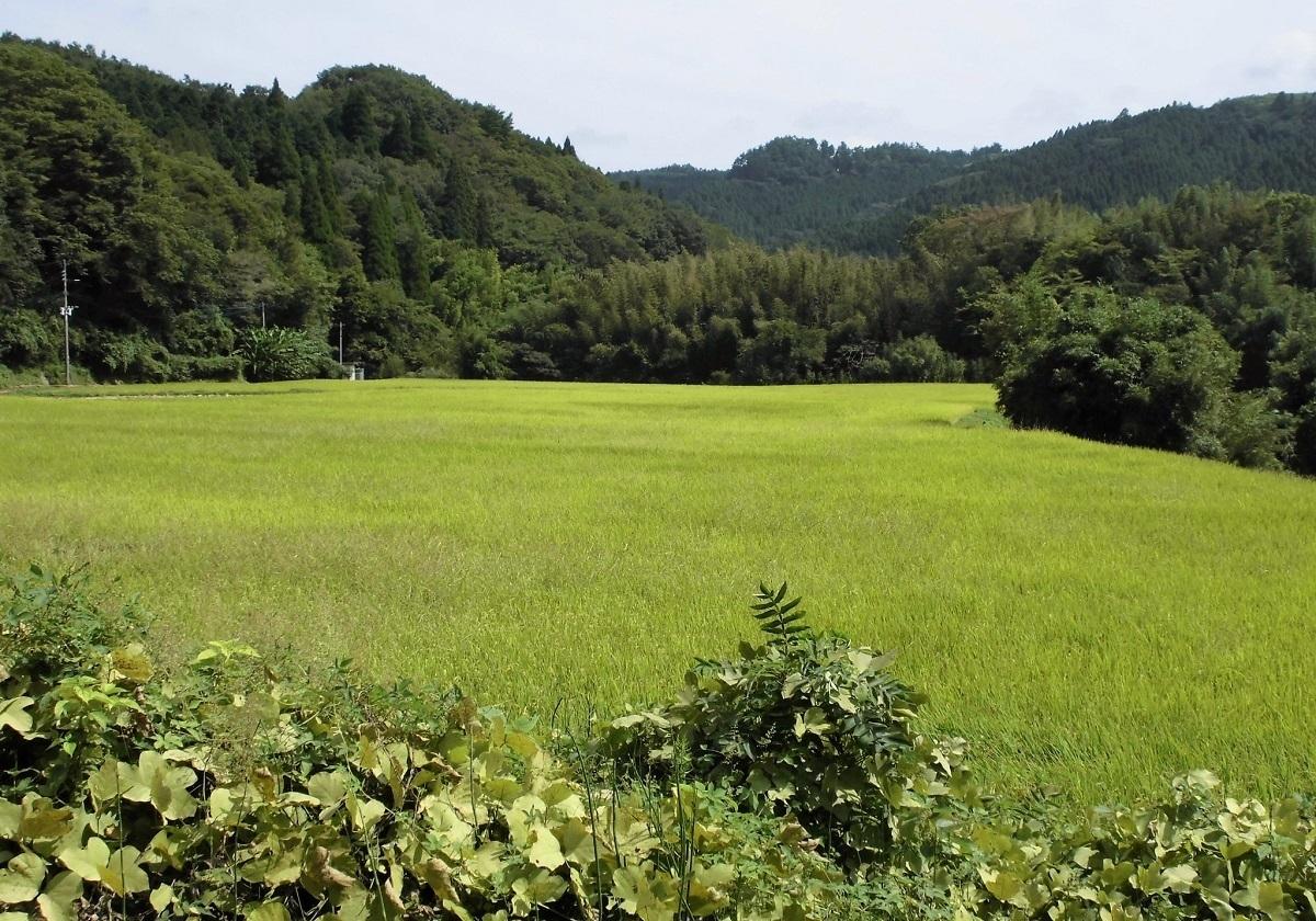 大分県直入町.jpg
