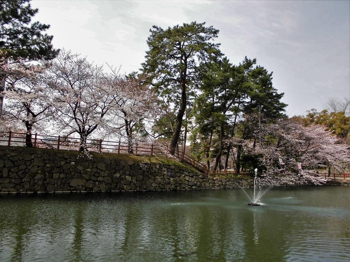 小倉城の濠.jpg