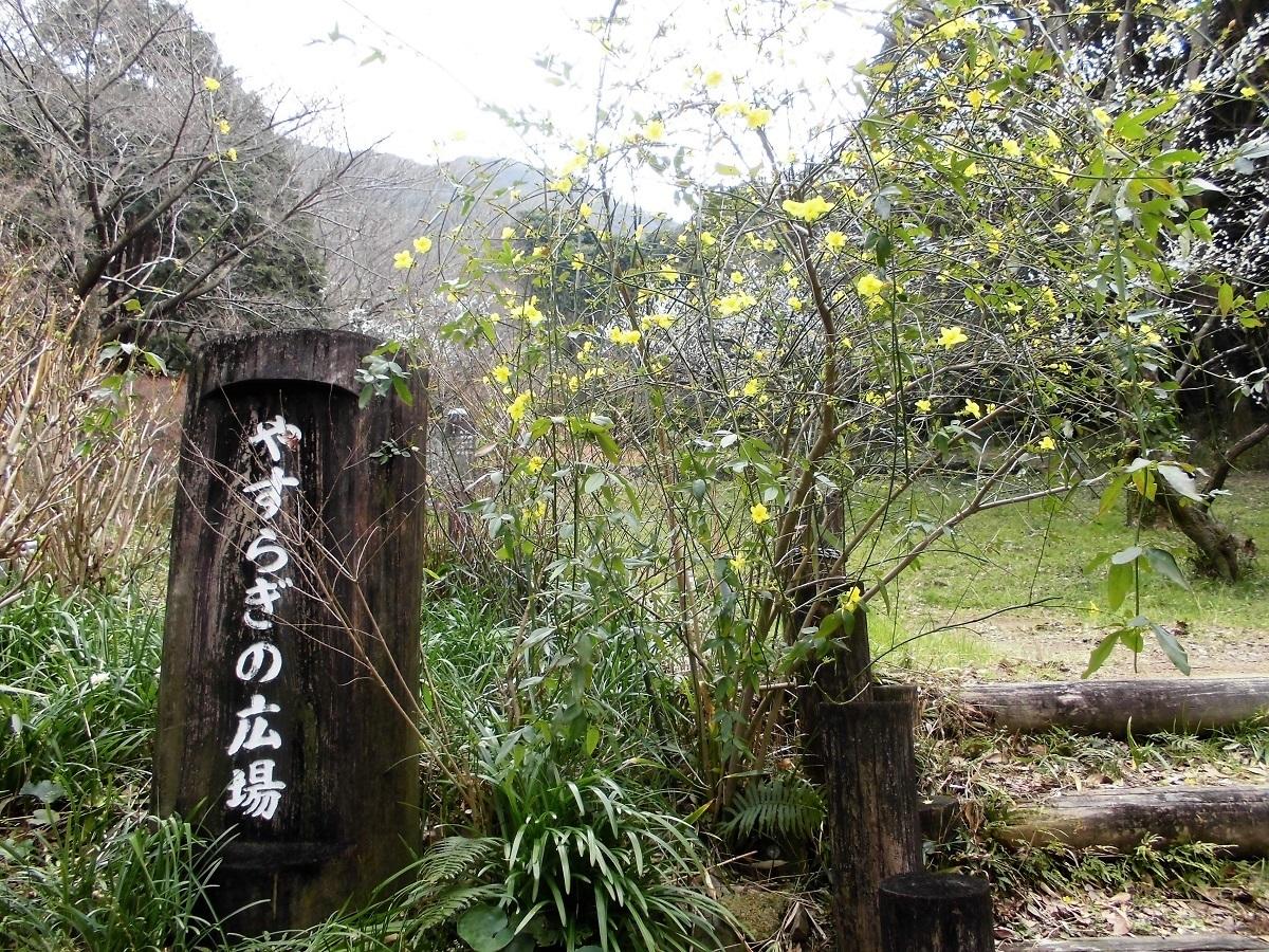 足立山森林公園�@.jpg