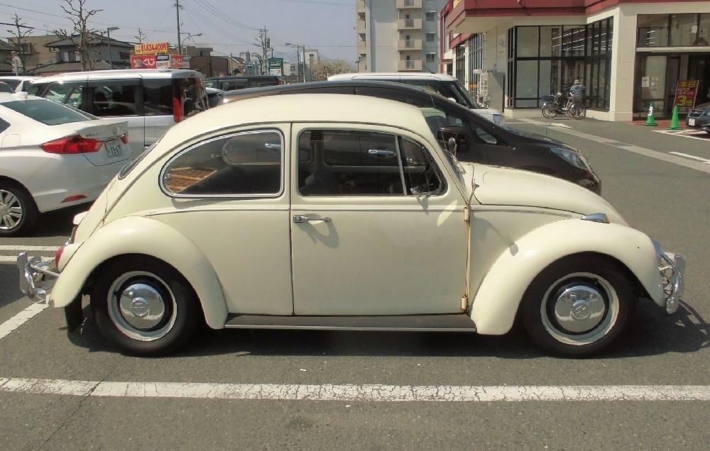 Volkswagen beetle2.jpg