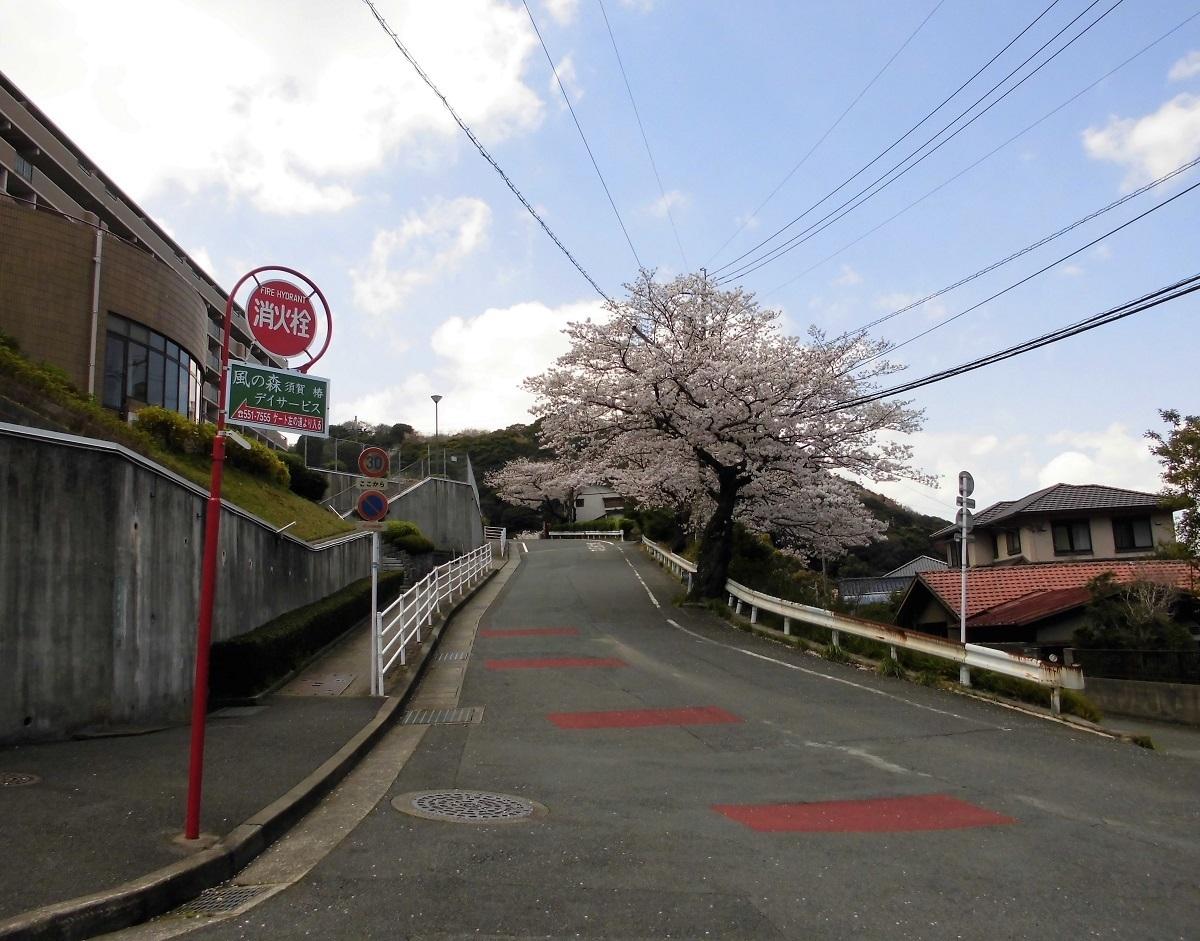 0402小倉北区�A.jpg