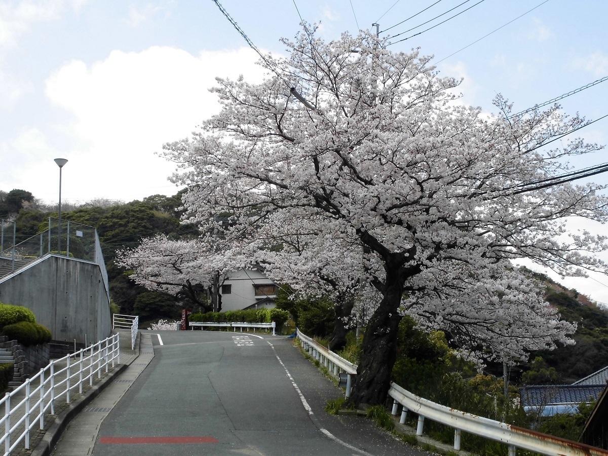 0402小倉北区�B.jpg
