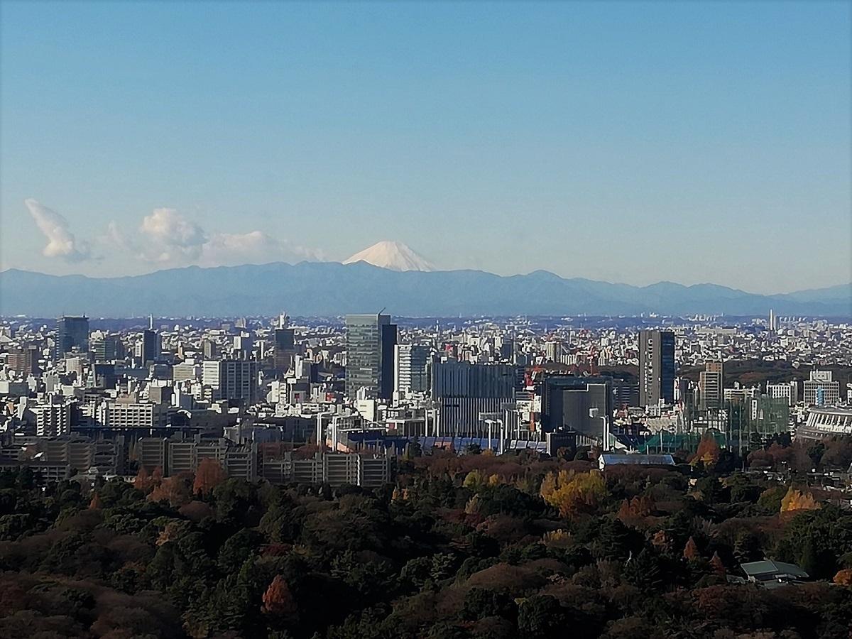 ニューオオタニから富士山.jpg