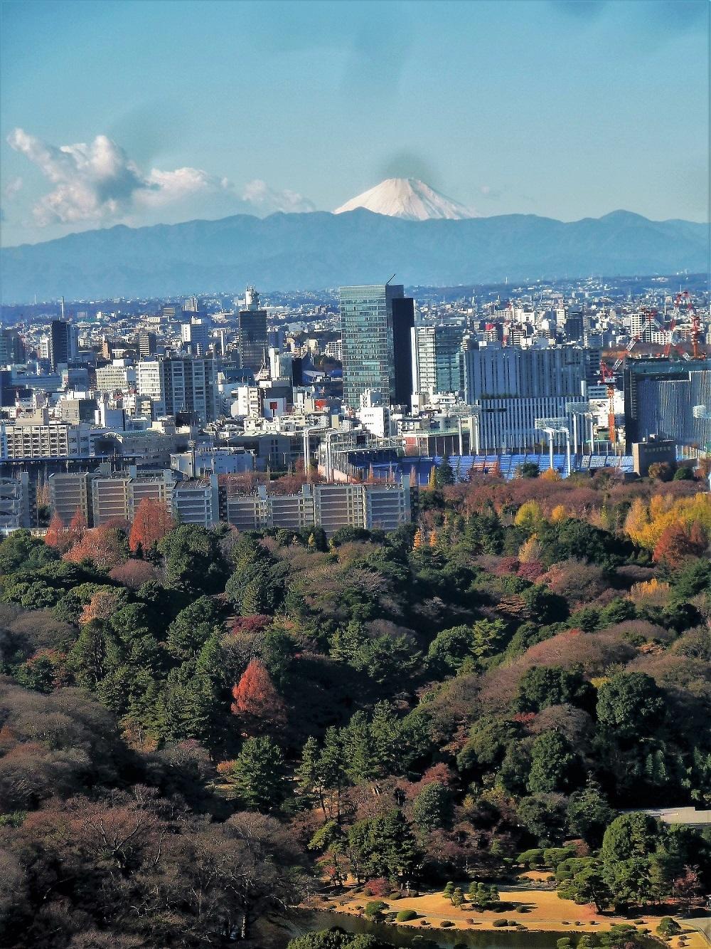 ニューオータニから富士山2.jpg