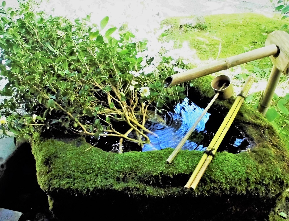 亀の井ガーデン3.jpg