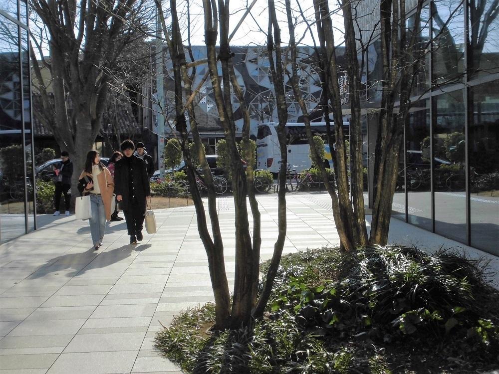 代官山蔦屋書店2.jpg