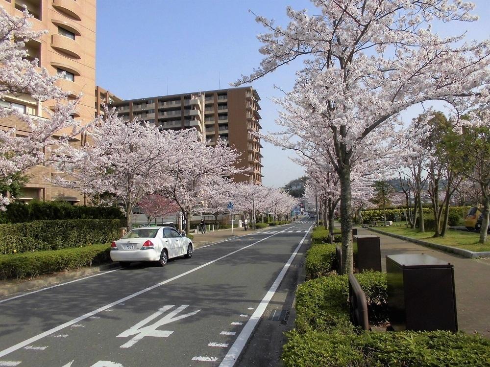 八幡東区高見.jpg