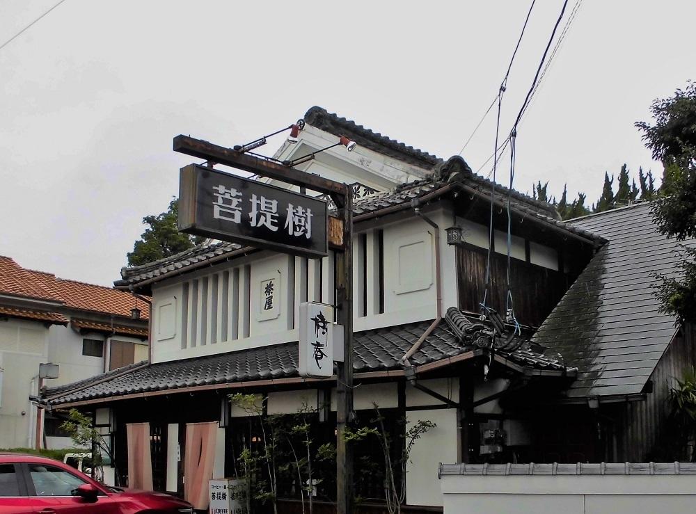 八幡西区菩提樹.jpg