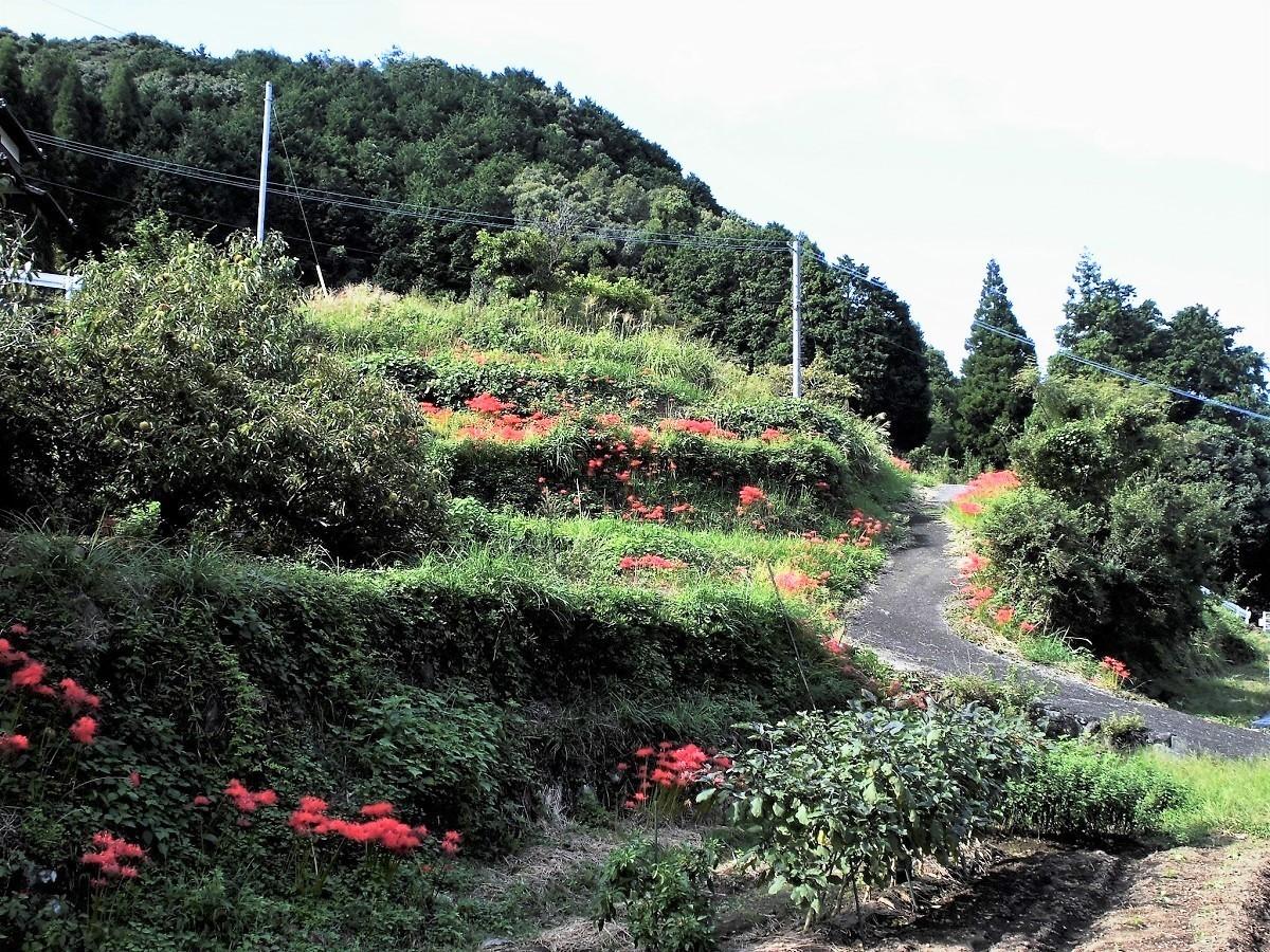 安心院町�U.jpg