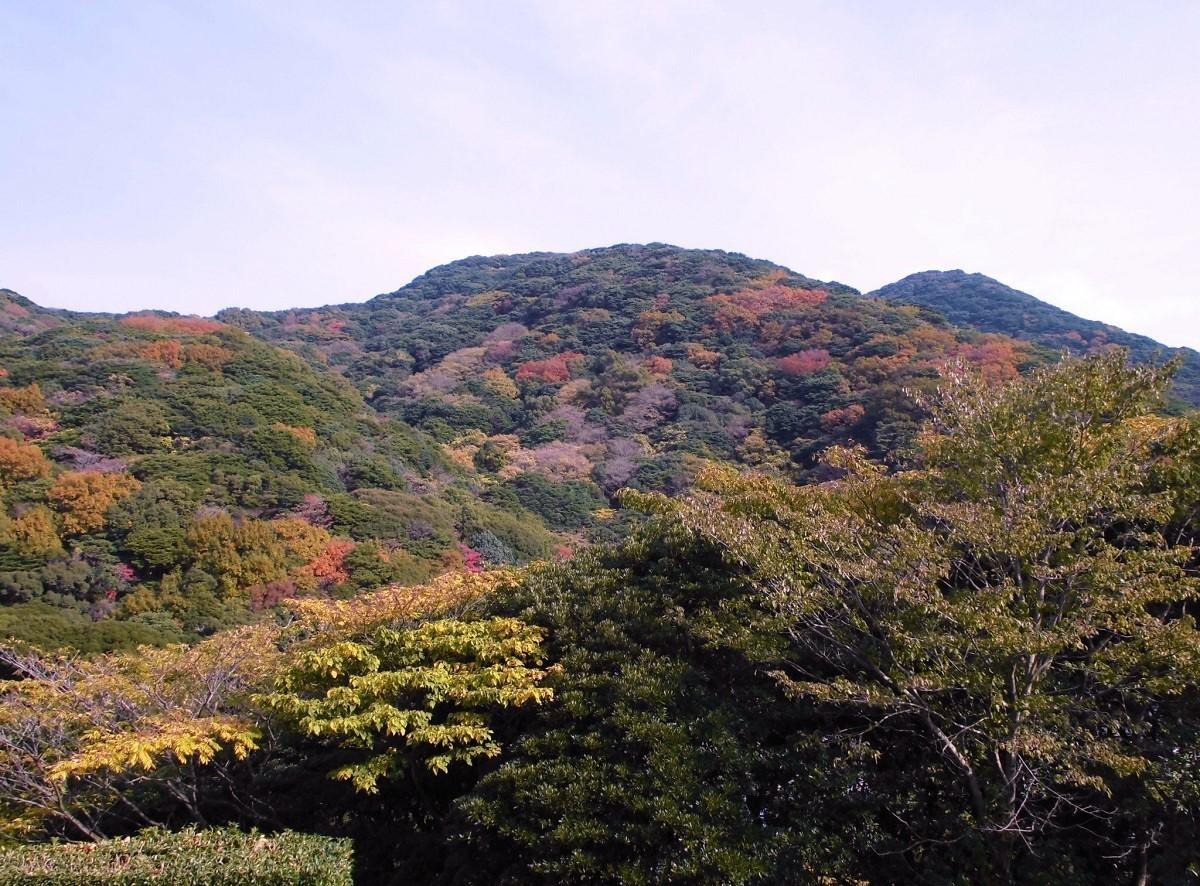 小倉 足立山系.jpg