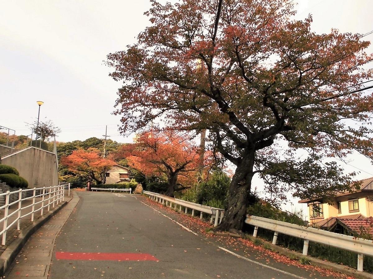 小倉北区001.jpg