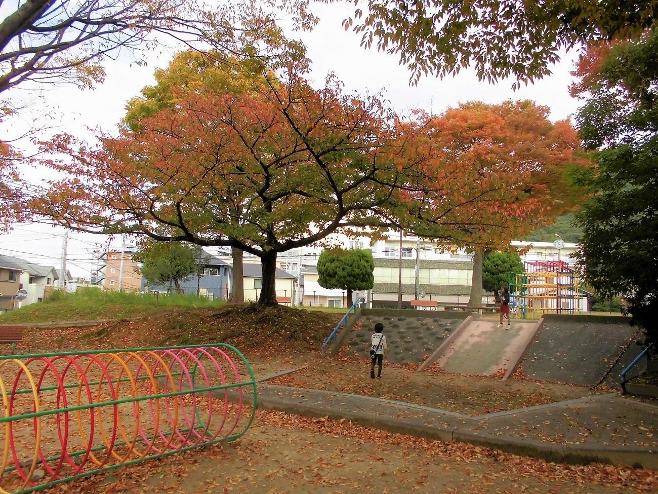 小倉北区11月.jpg