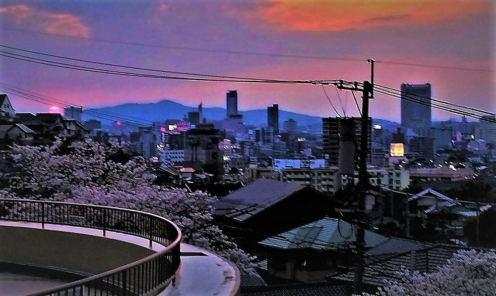 小倉北区20200404.jpg