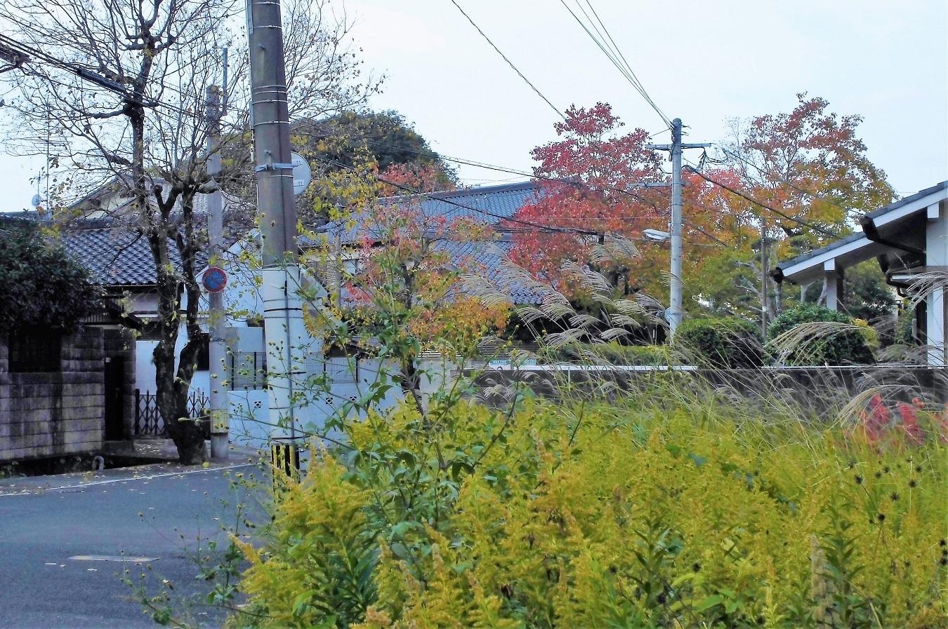 小倉北区�A.jpg