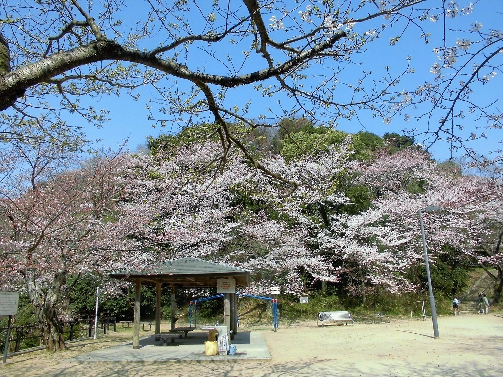 小倉足立公園2.jpg