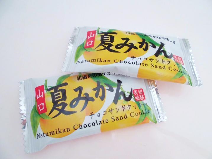 山口夏みかんチョコレートクッキー.jpg