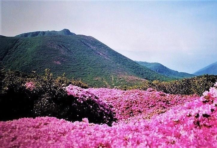 平治岳&大船山.jpg