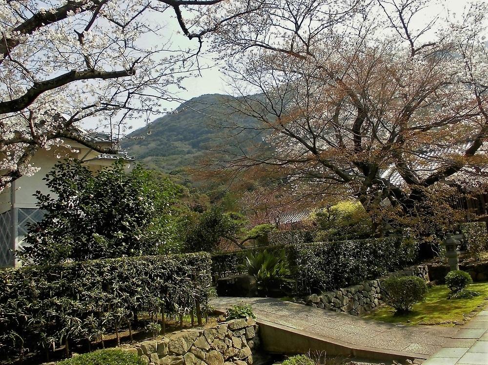 広寿山 福聚寺1.jpg