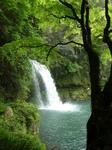 慈恩の滝3.jpg