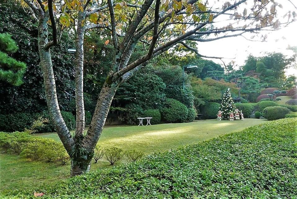旧松本家住宅�V.jpg