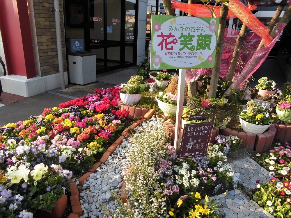 春の花.jpg