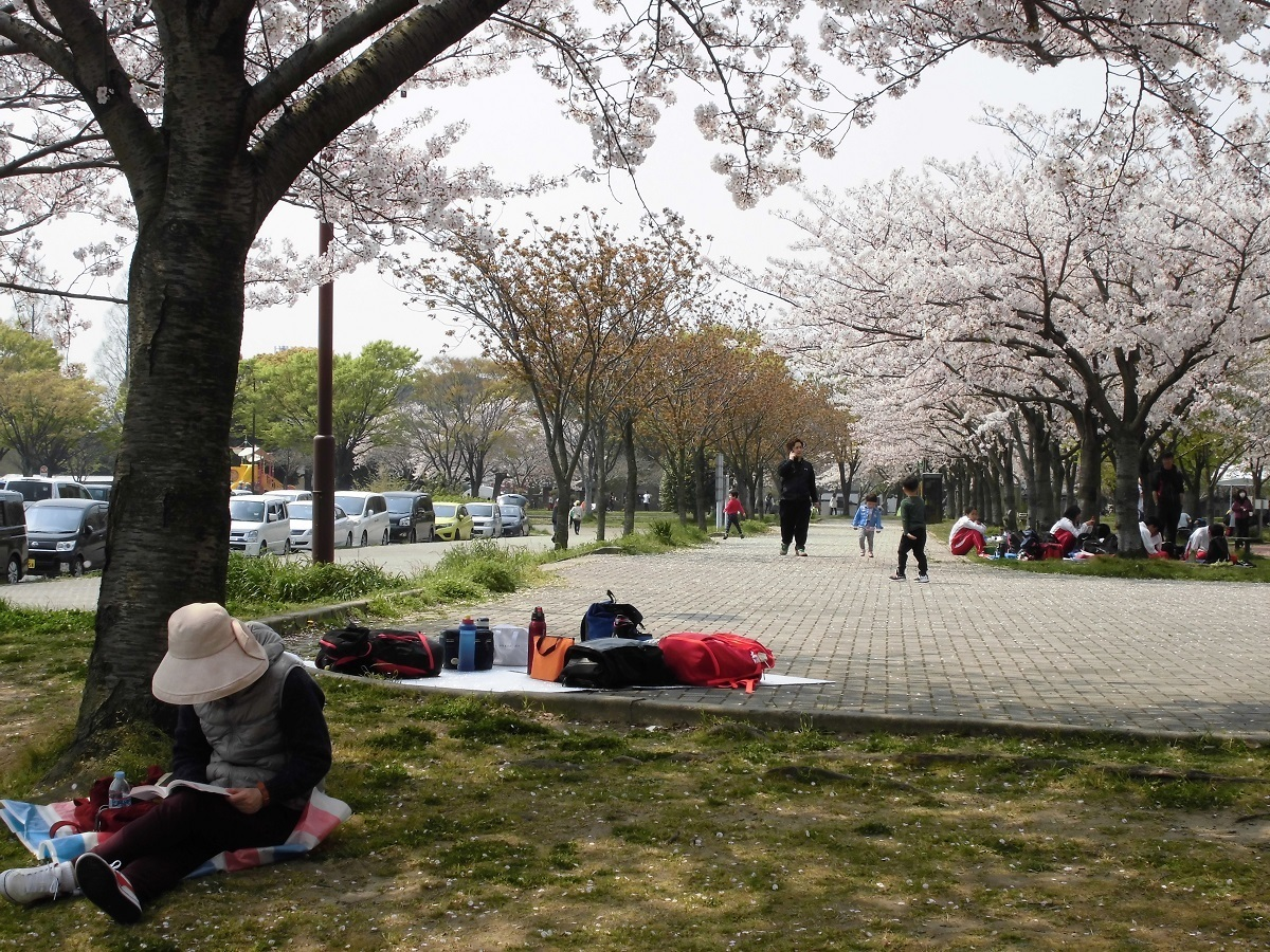 本城公園.jpg