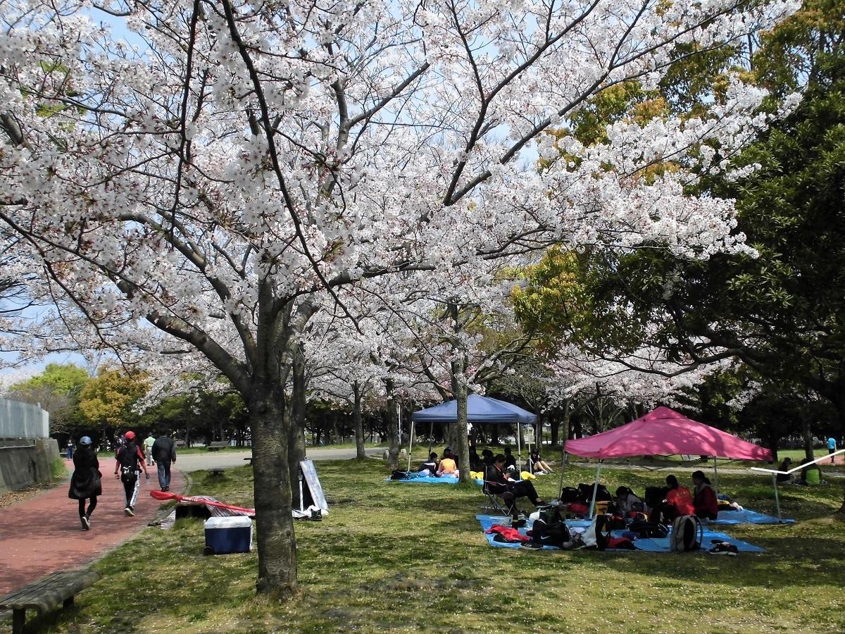本城公園2.jpg