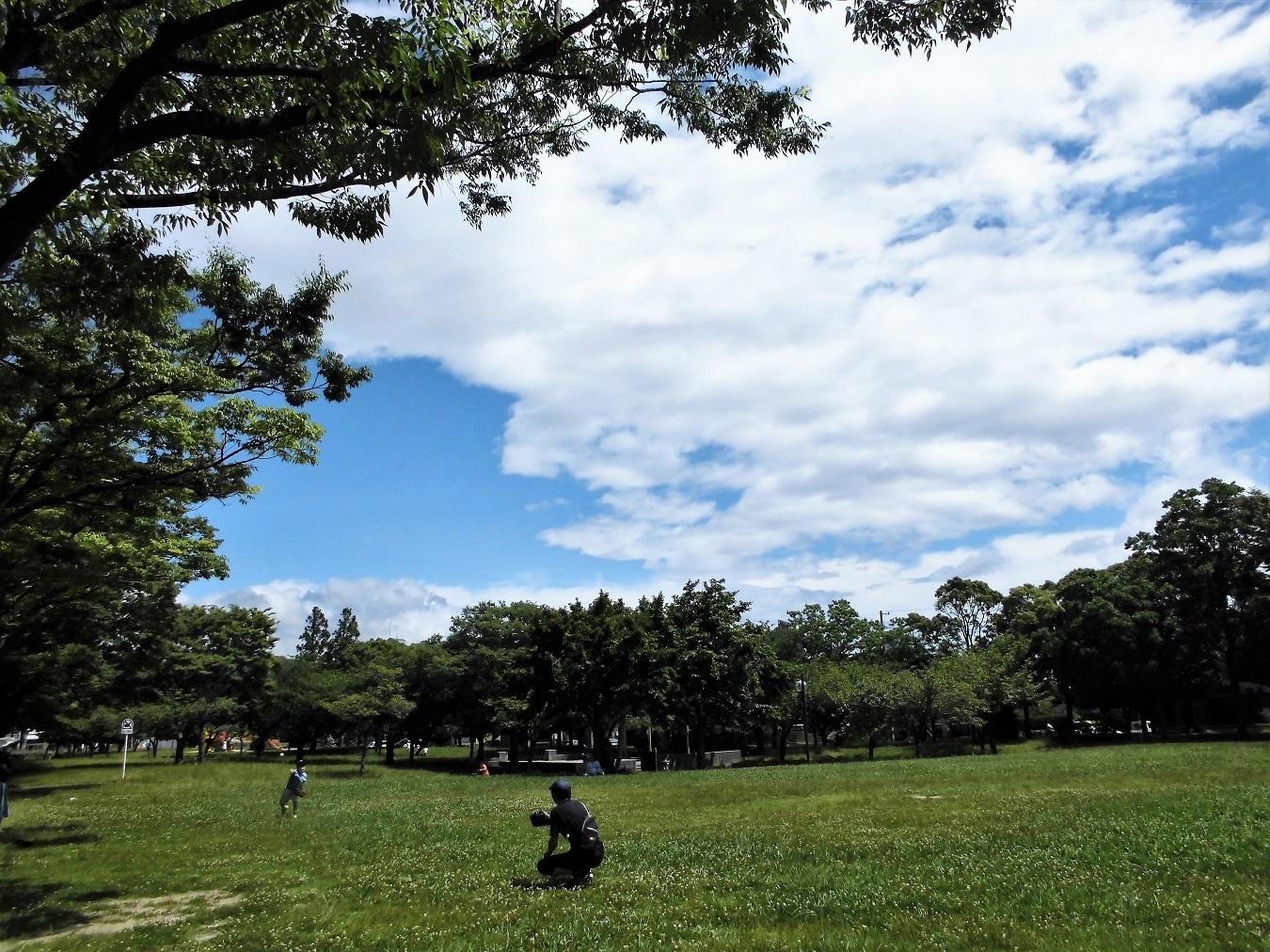本城公園 (2).JPG