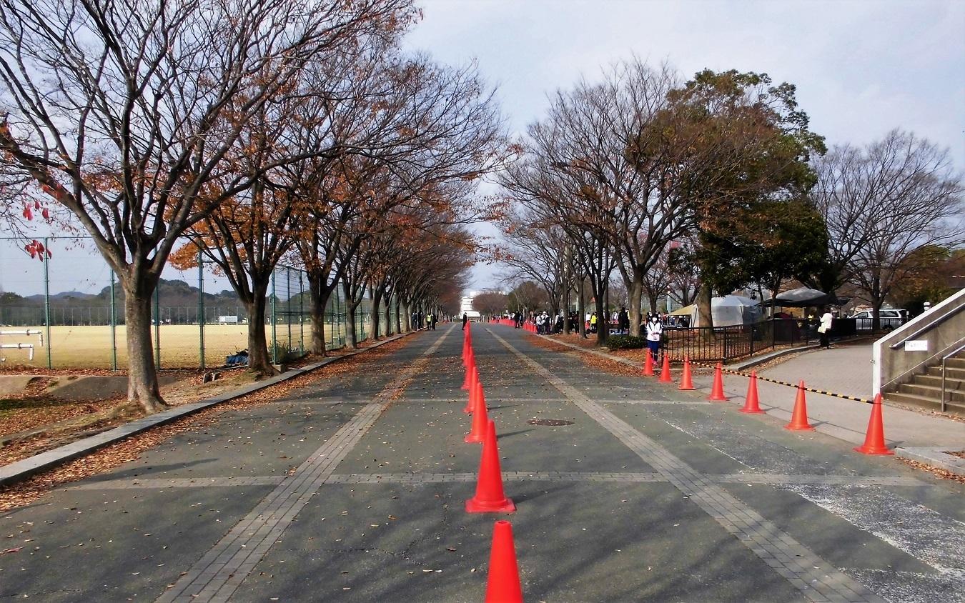 本城公園 (3).JPG