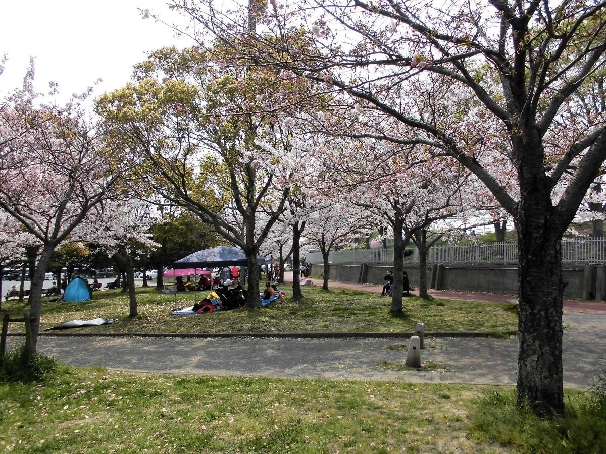 本城公園3.jpg