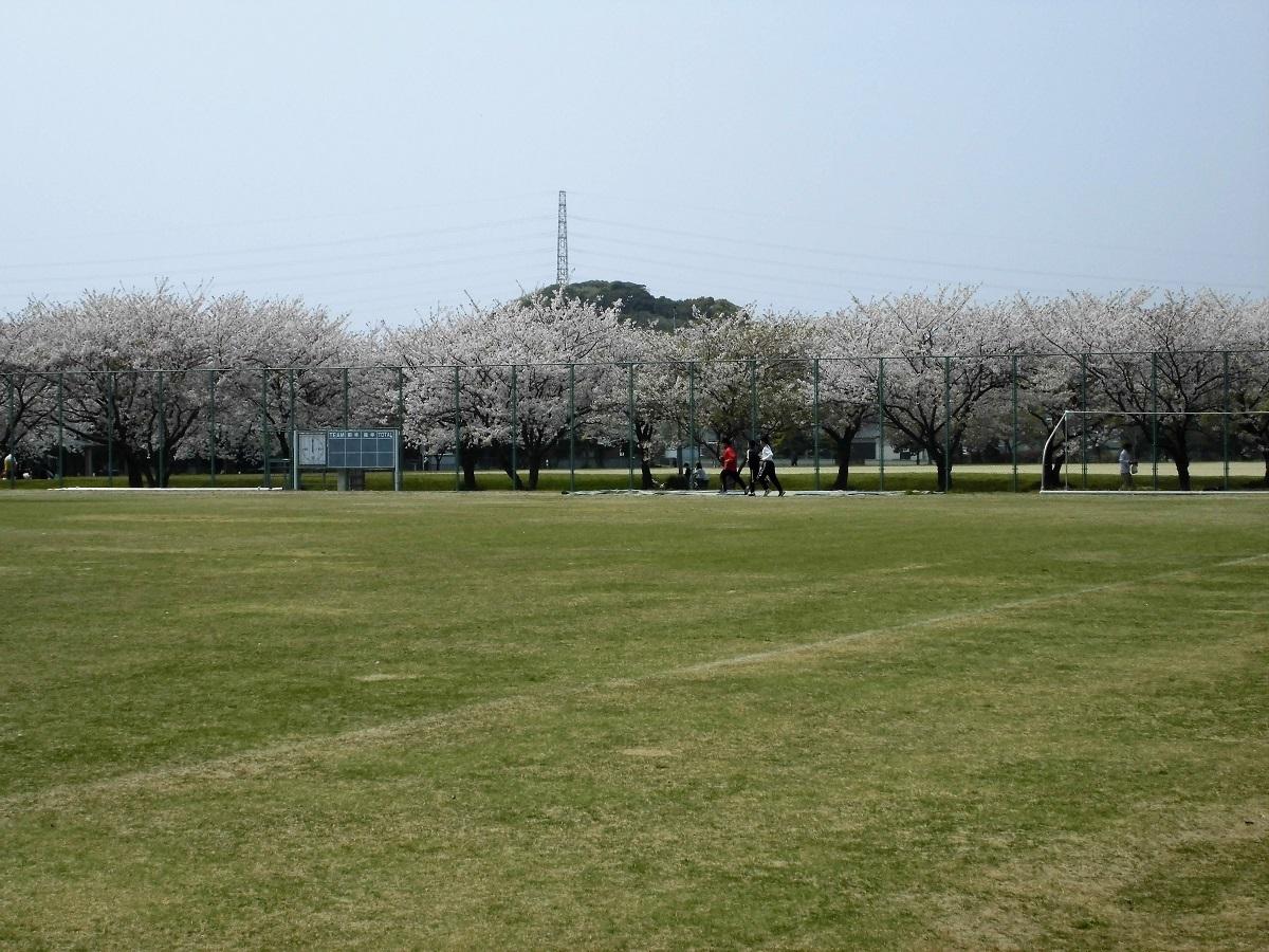 本城公園6.jpg