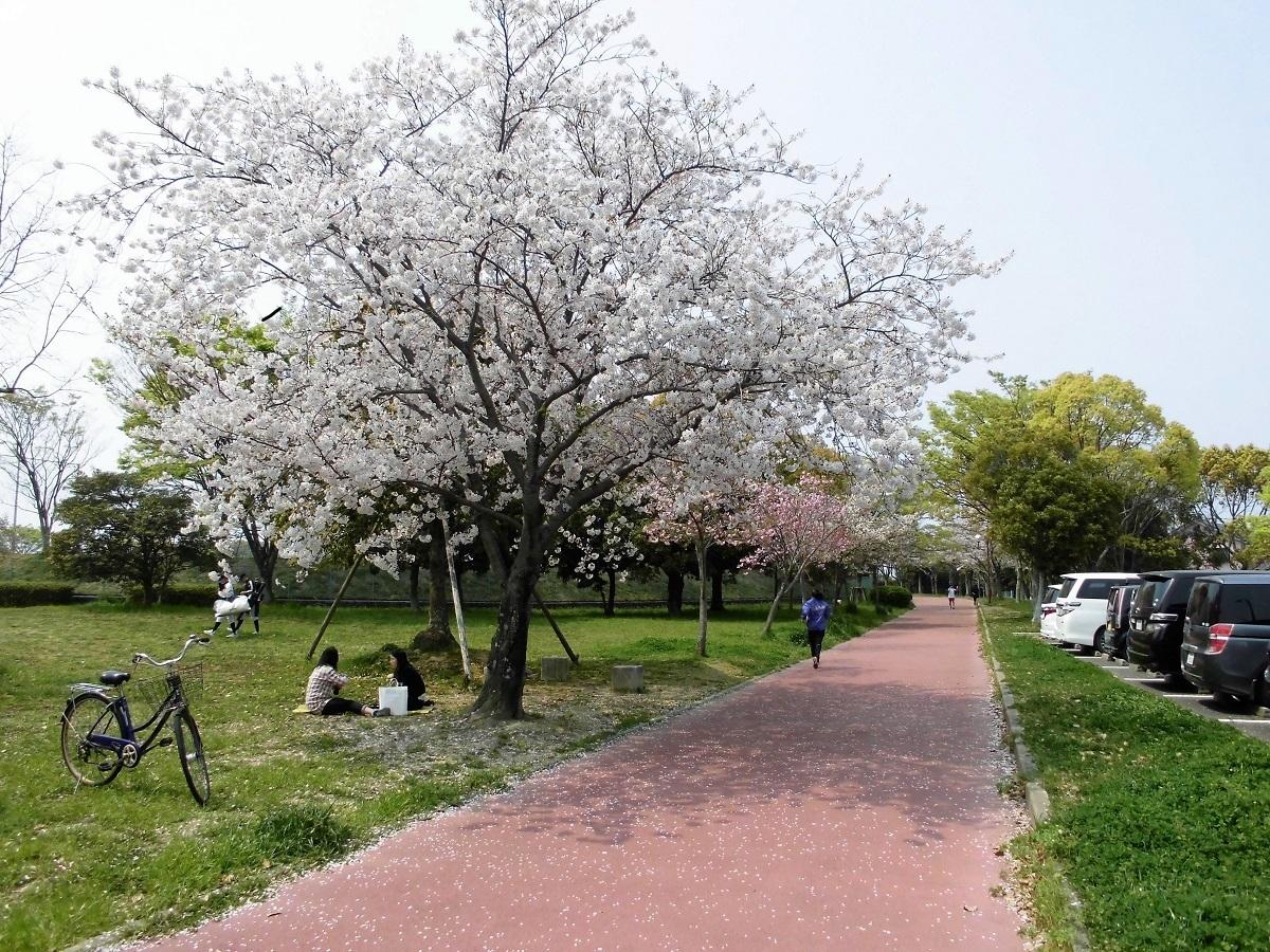本城公園7.jpg