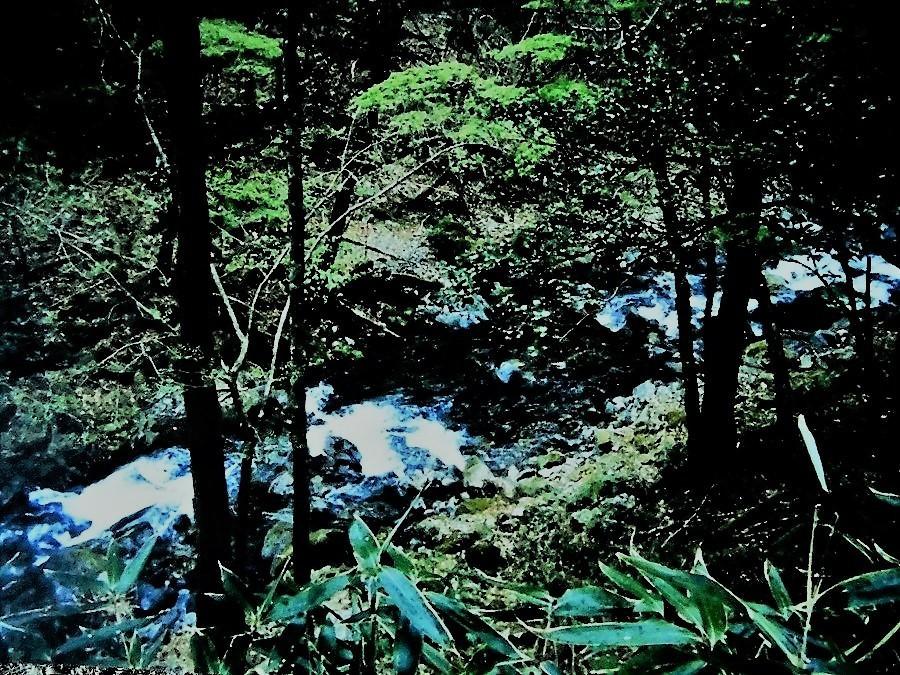 球磨川源流.jpg