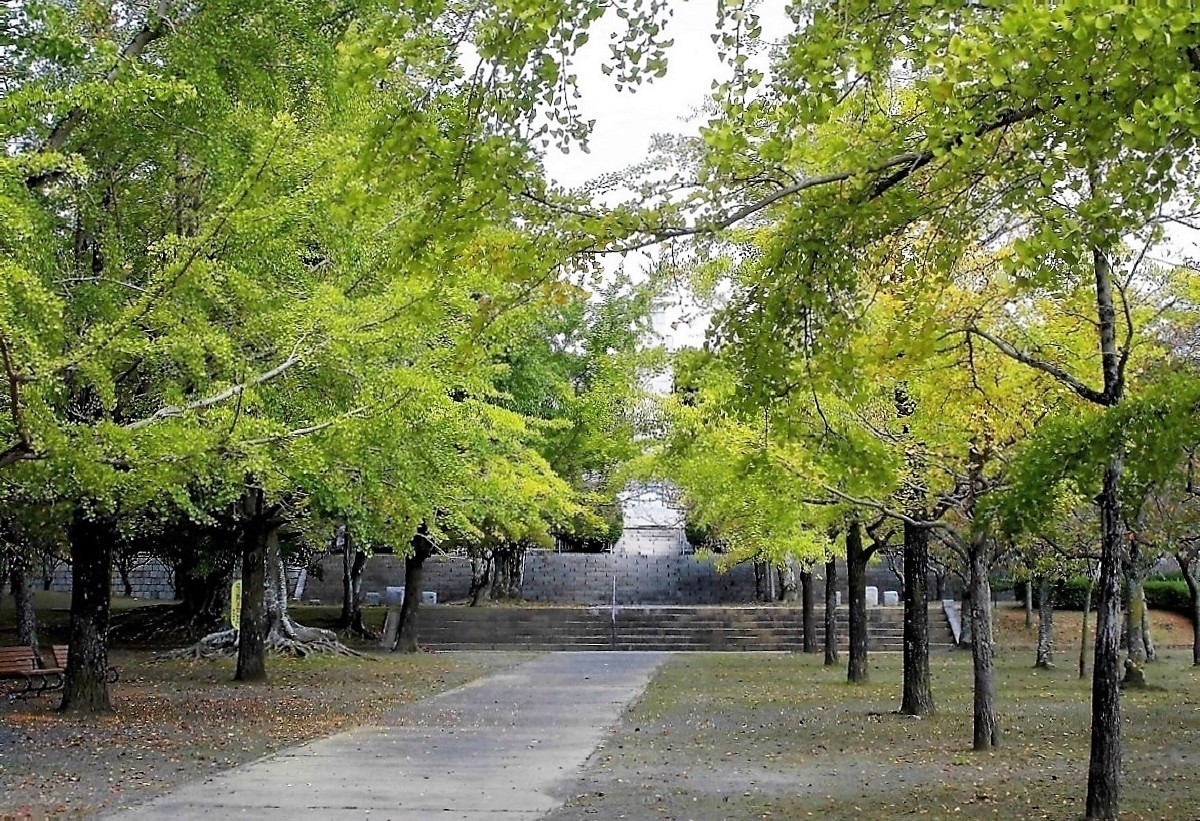足立公園.jpg