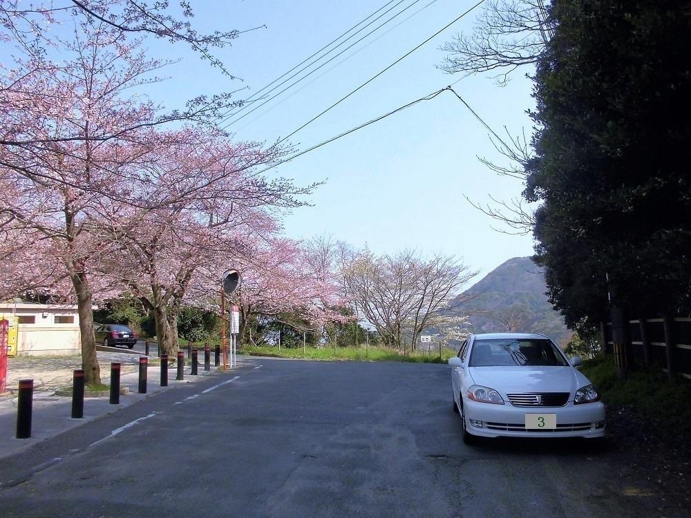 足立公園 展望台.jpg