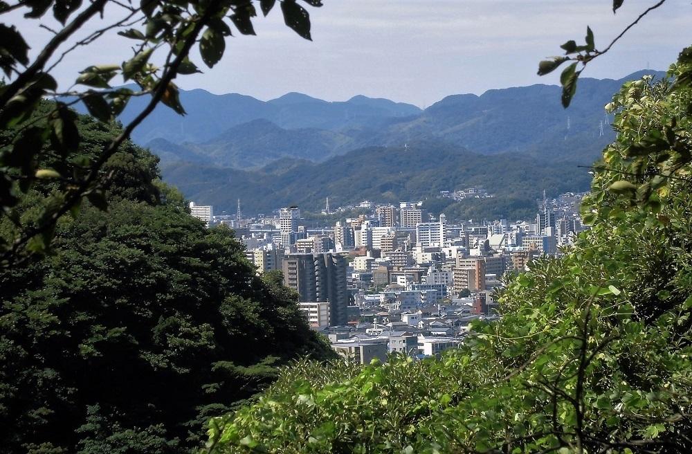 足立公園展望台3.jpg