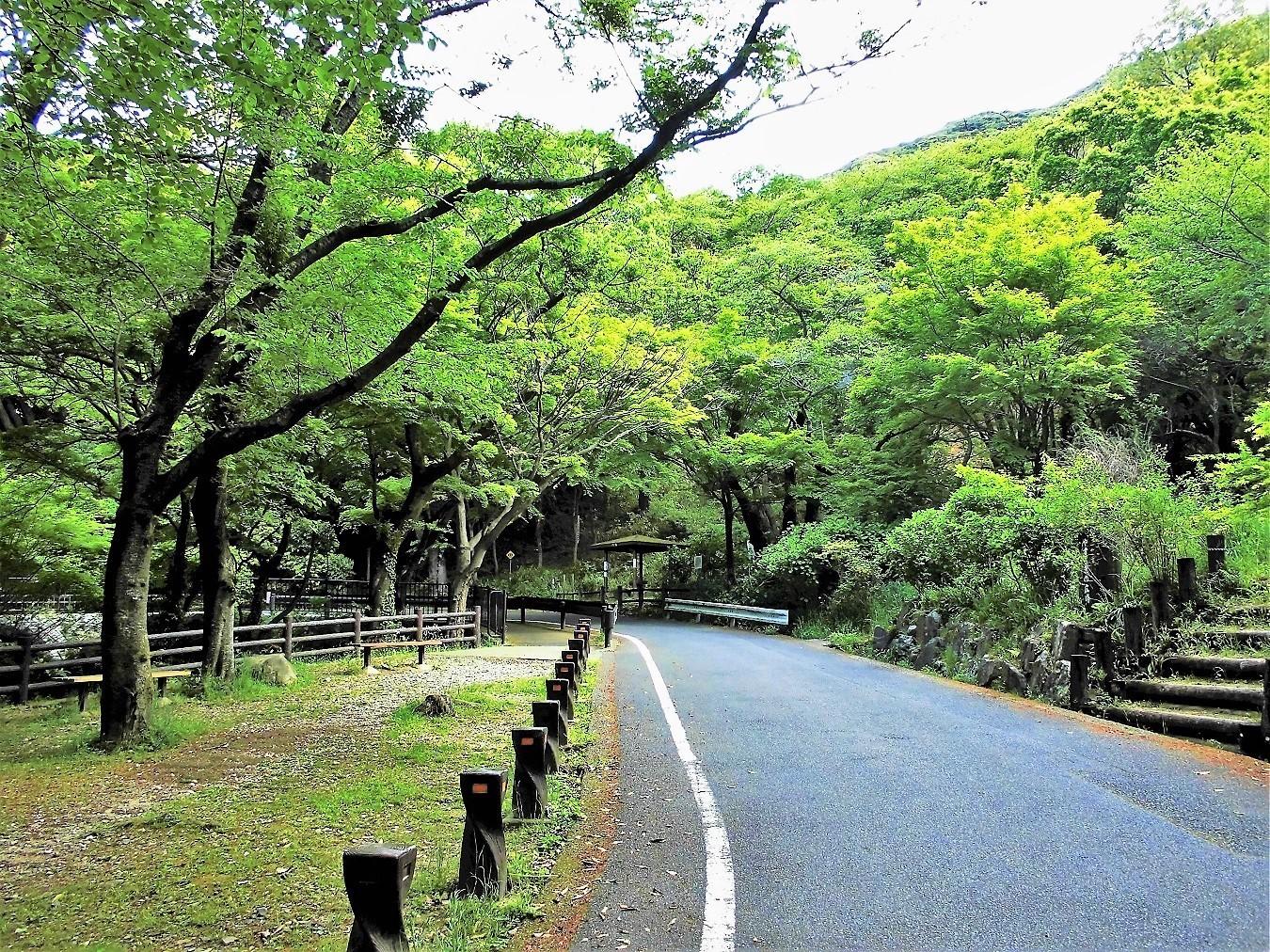 足立山 森林公園.JPG