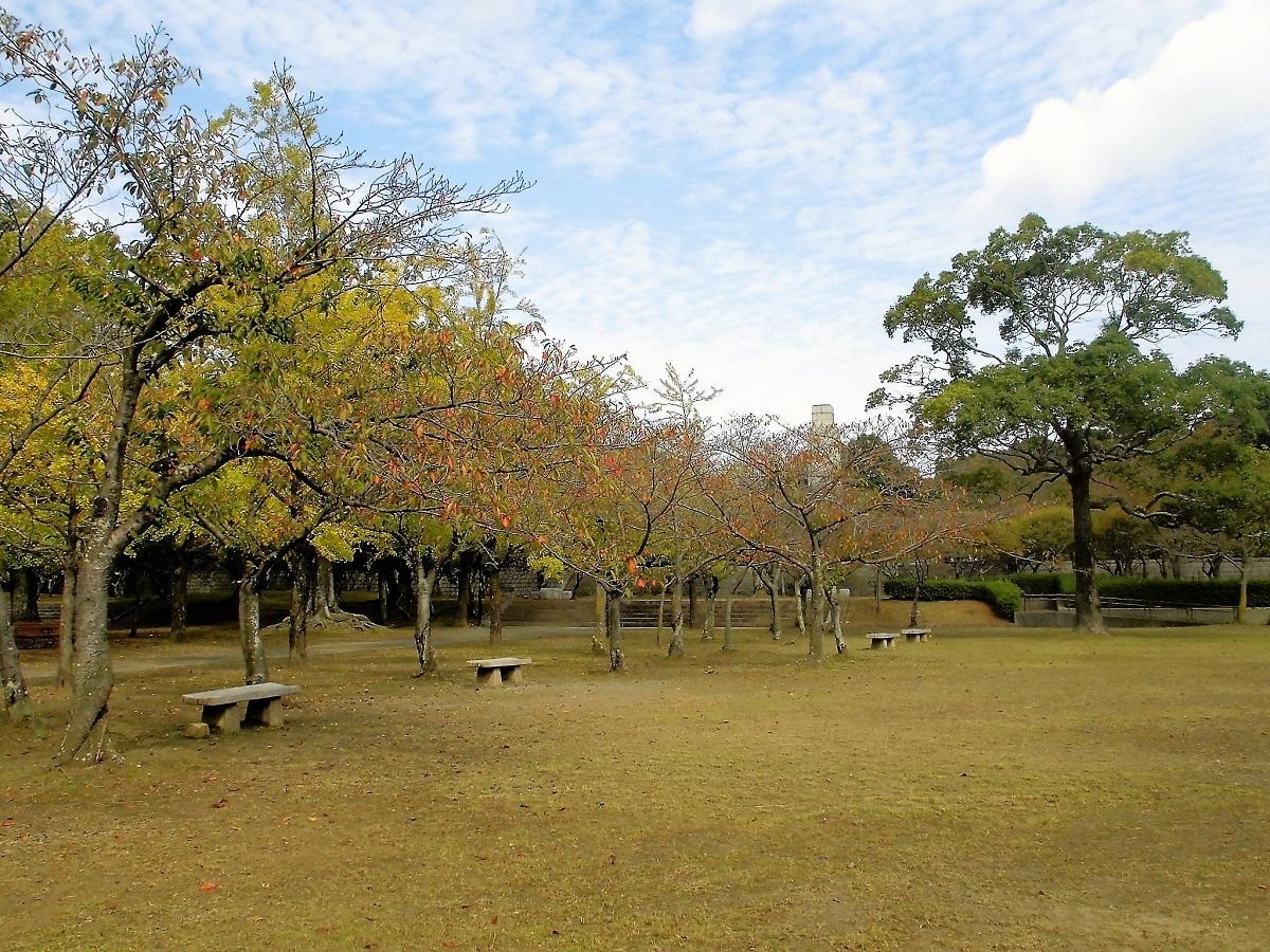 足立平和公園20201026.jpg