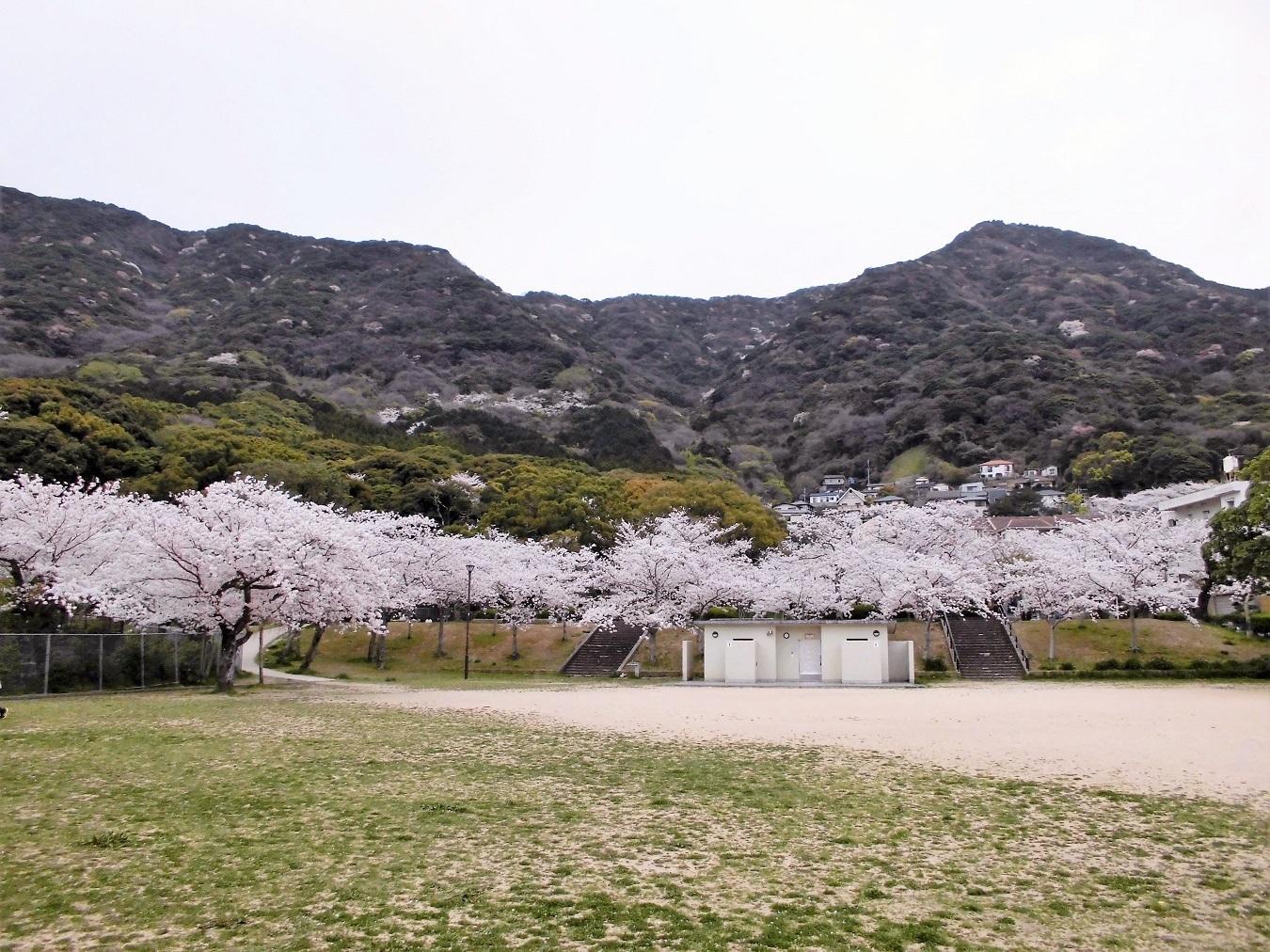 足立森林公園 (1).JPG