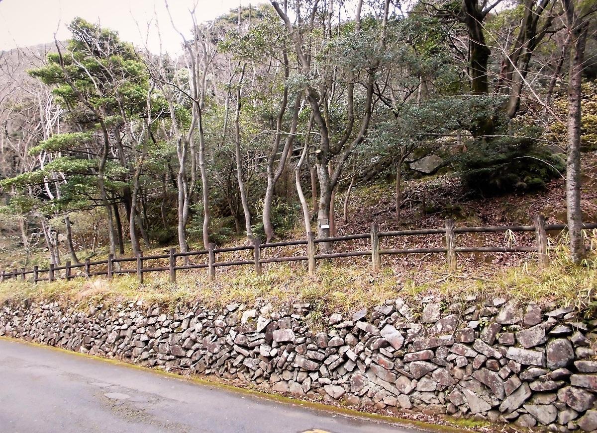 足立観光道路3.jpg