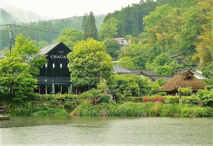 金鱗湖201505.jpg
