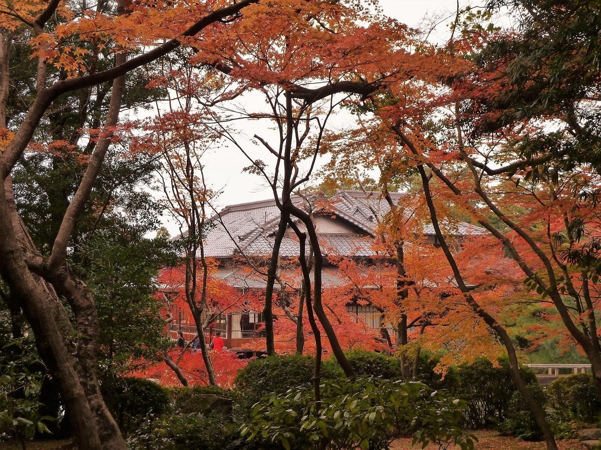 長府庭園.jpg