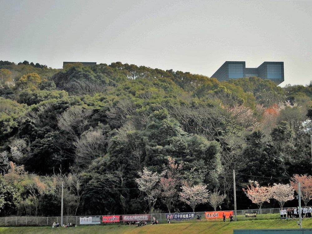 鞘ヶ谷陸上競技場3.jpg