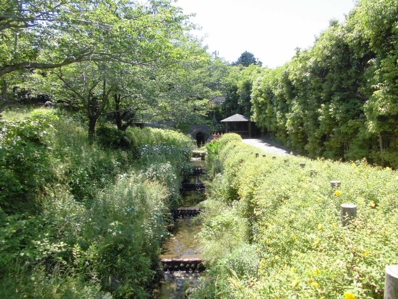 鞘ヶ谷4.jpg