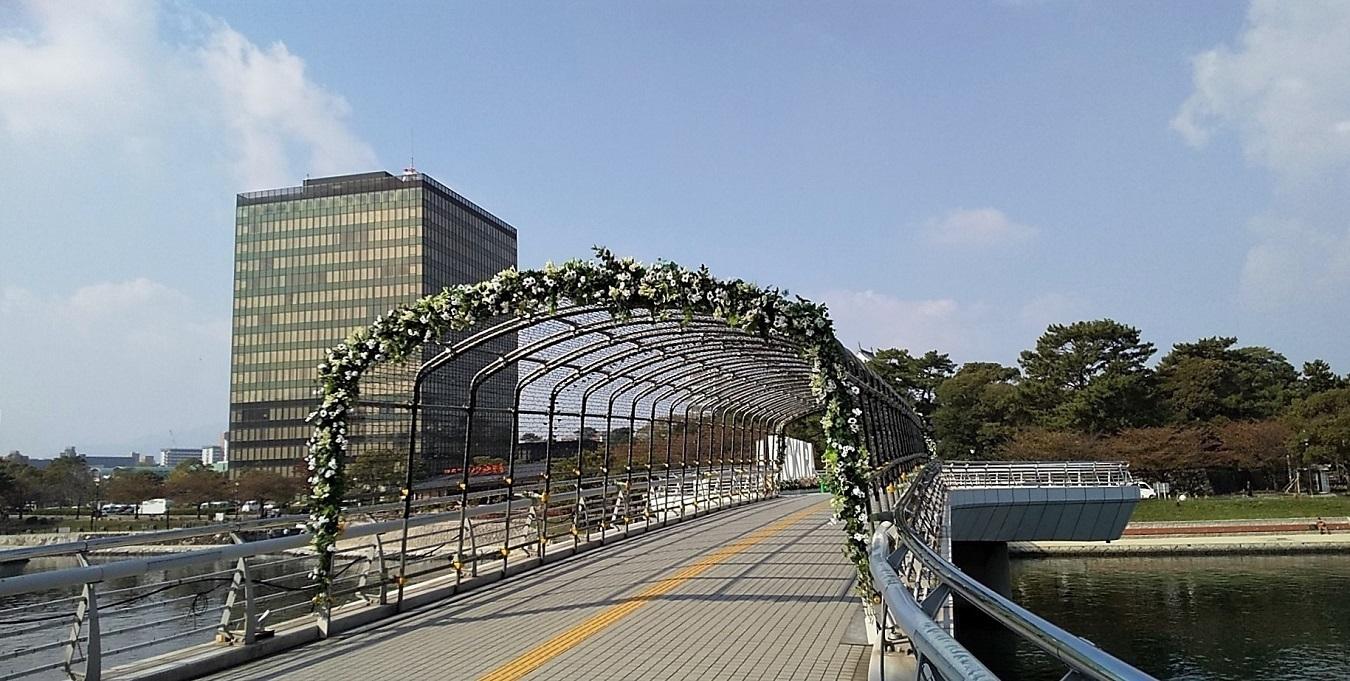 鴎外橋�V.jpg