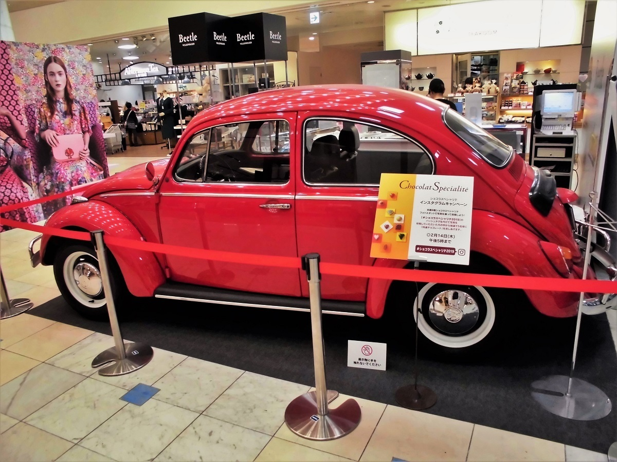 beetle no2.JPG