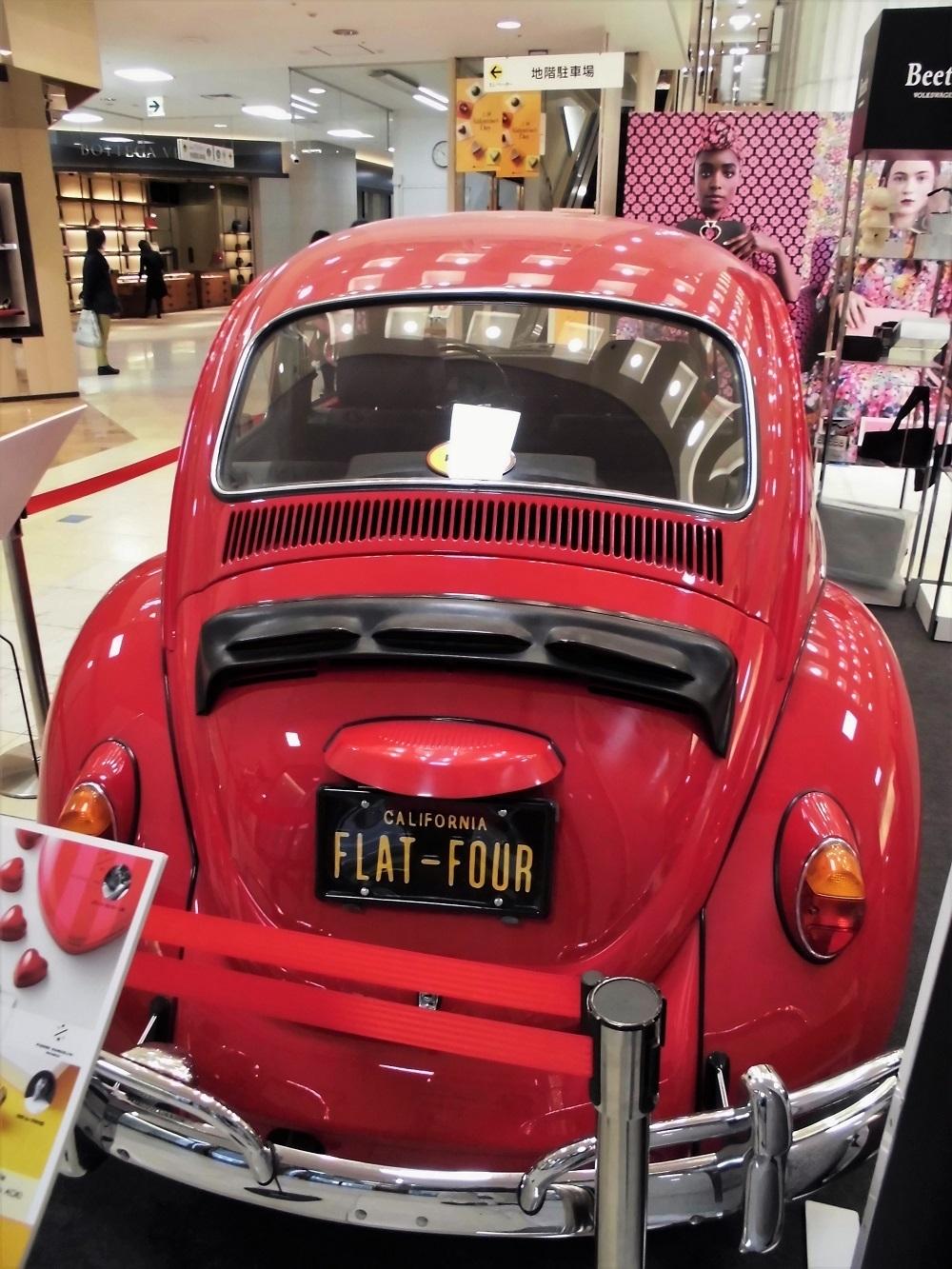 beetle no3.JPG