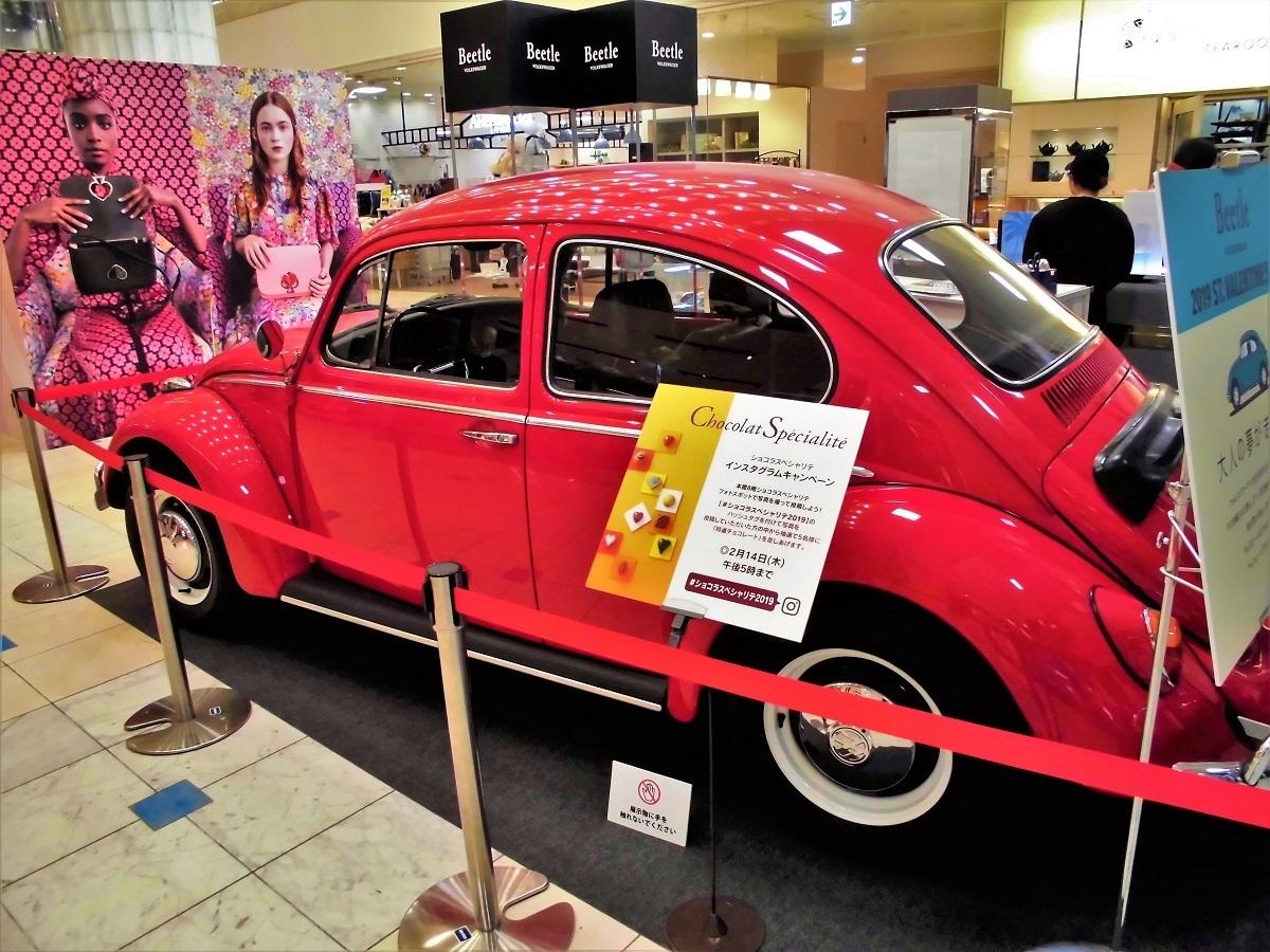 beetle no4.JPG