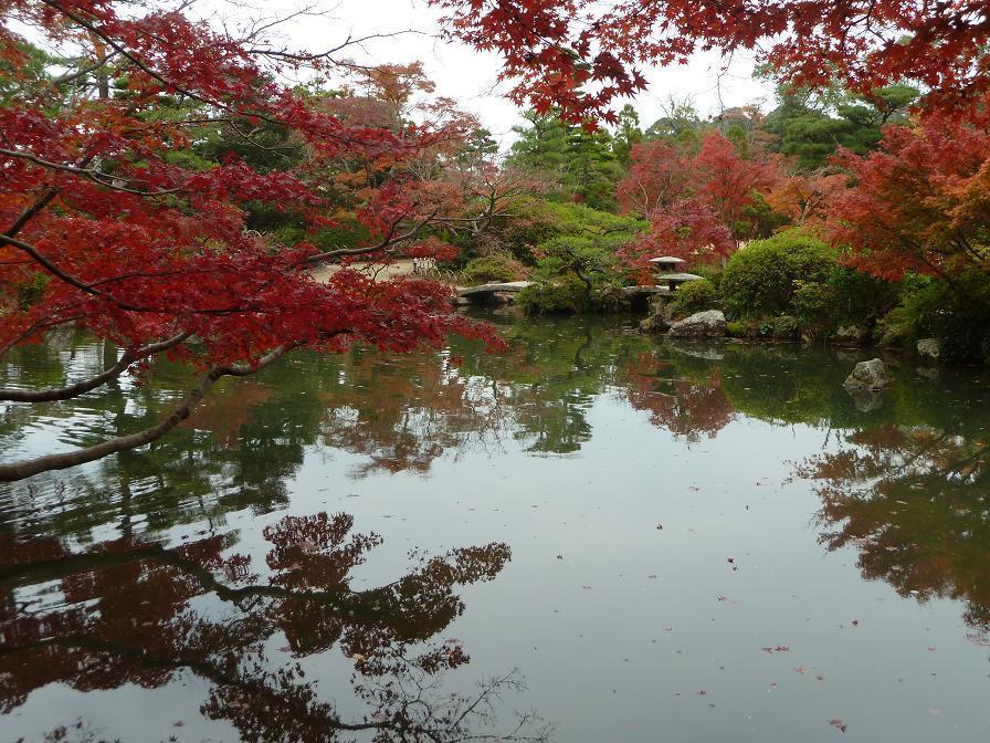 chofu garden3.jpg