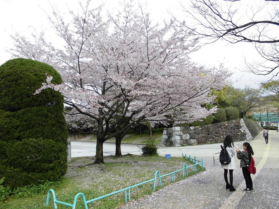 kokura castle4.jpg